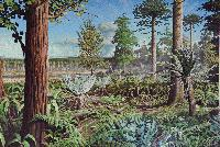Antarctic Forest - This painting was painted by Robert Nicholls of Palaeocreations based on research carried out on the BAS Type and Figured collection in the last 30 years.