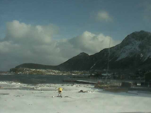 Latest Bird Island webcam image